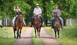 Alemanes y nórdicos destacan entre los extranjeros que hacen turismo rural en Uruguay